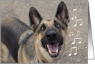Focus for a Cause, Birthday, German Shepherd Singing card