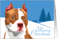 Happy Holidays, From Our Pack to Yours, American Pit Bull, Snowflakes card