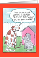Cat Leash Humor Card