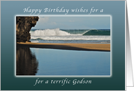 Wishes for a Happy Birthday for a Godson, Kauai, Hawaii card
