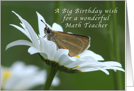 A Big Birthday Wish for a math teacher, Butterfly in a White Daisy card