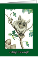 Happy Birthday to My Ex-Husband, Mouse with Empty Acorn Card
