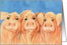 Three Pigs Looking to say Hi card