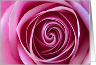 The Swirl Pink Rose Photo Blank Note Card