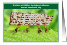 Jewish Humor Ants Afikomen Too Well Hidden Passover Card