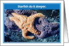 Starfish Do It Deeper Valentine's Day Card