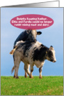 Jewish Humor Kosher Cows Mating Funny Valentine's Day Card