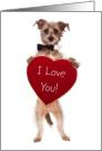 Cute Falling In Love Card