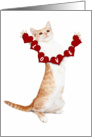 I Love You Card With Cute Kitten card