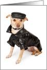 Funny Dog Apology Card