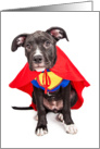 Happy Birthday to Dad - Cute Dog Superhero Photograph card