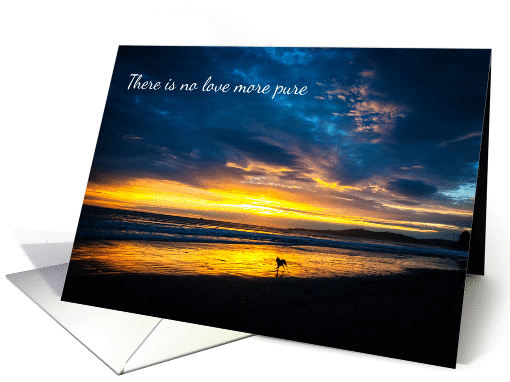 Sympathy dog at the beach with beautiful sunset greeting card this card is available for sale through greeting card universe the inside reads how wonderful to have been on the receiving end of such love m4hsunfo